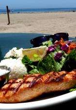 salmon @ shoreline café